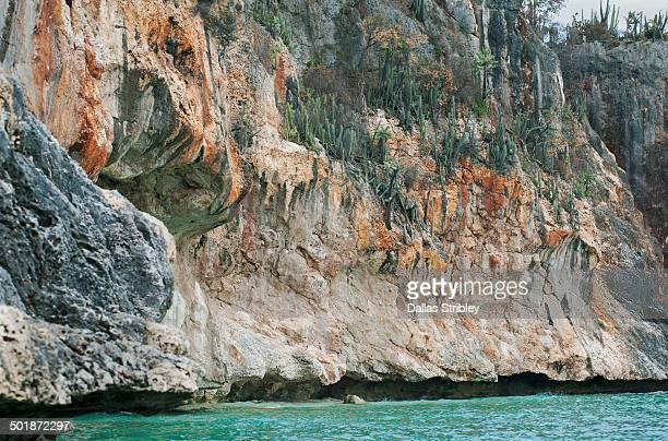 Cactus-covered cliffs at Bahia de las Aguilas