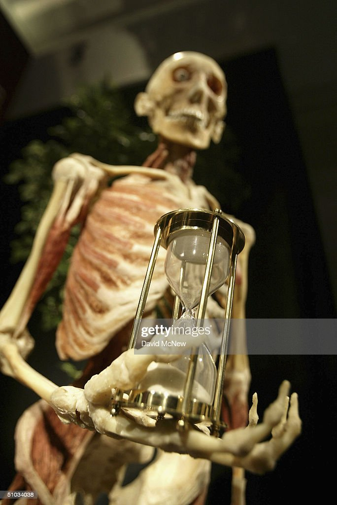 Cadaver Holds An Hour Glass At The Body Worlds The Anatomical Of Picture Id51034038