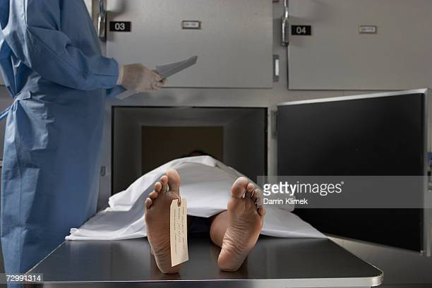 """cadaver on autopsy table, label tied to toe, close-up"" - leiche stock-fotos und bilder"