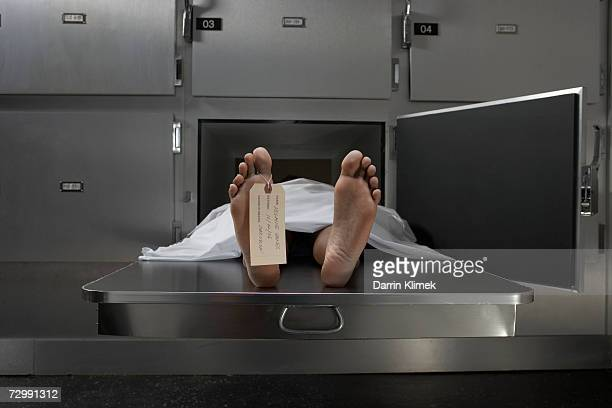 cadaver on autopsy table, label tied to toe - dead body stockfoto's en -beelden