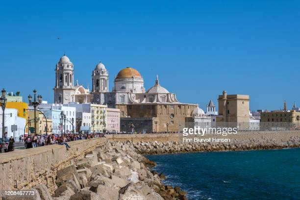 cadiz cathedral, blue sunny day - finn bjurvoll stock pictures, royalty-free photos & images
