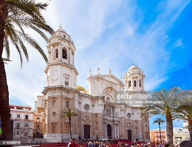 cadiz cathedral facade surrounded by palm trees in andalusia, spain - cádiz fotografías e imágenes de stock