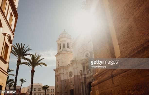Cadiz Cathedral facade surrounded by palm trees in Andalusia, Spain