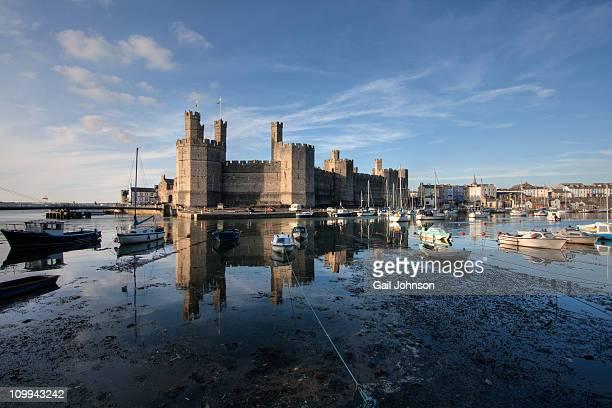 caernarfon castle - gwynedd stock photos and pictures