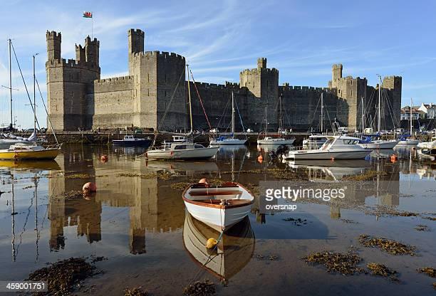 caernarfon castle - caernarfon stock pictures, royalty-free photos & images
