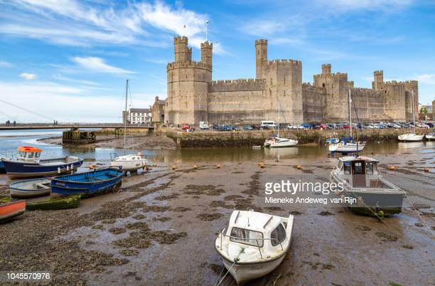 Caernarfon Castle, situated on the River Seiont, viewed at low tide, Caernarfon, Gwynedd, North Wales, United Kingdom