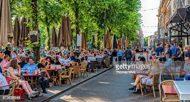 cafe's at the plein - the hague stock pictures, royalty-free photos & images
