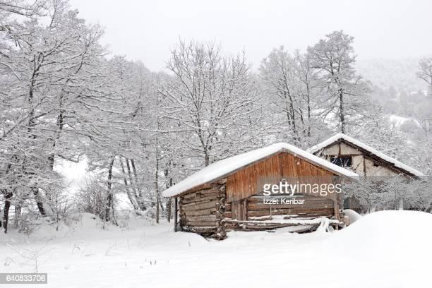 Café-tea house, after heavy snow in Abant, near Bolu, Turkey