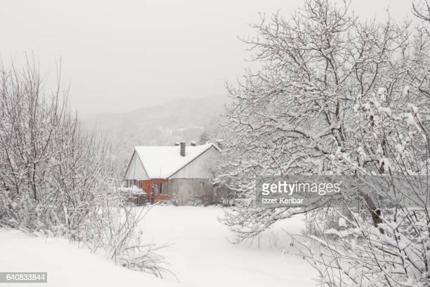 Café-tea house on snowy day, Abant Lake, Bolu Turkey