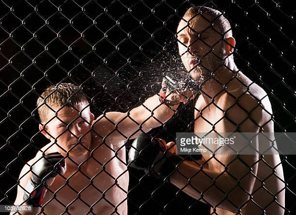 cage fighters - mixed martial arts stock pictures, royalty-free photos & images