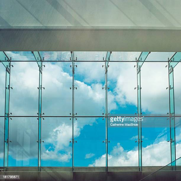 caged blue sky... - catherine macbride stockfoto's en -beelden