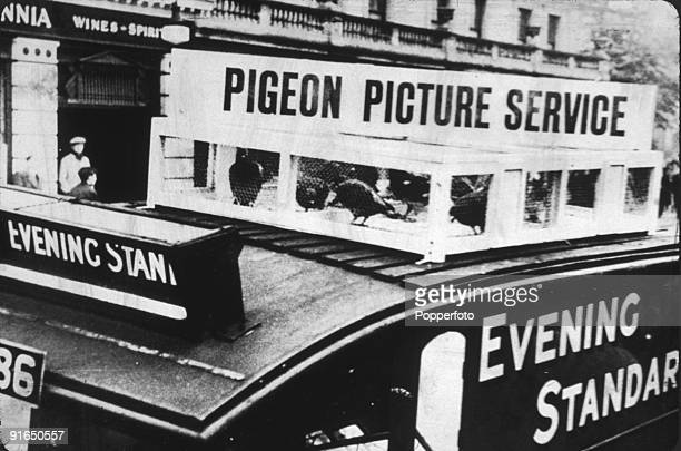 Caged carrier pigeons on the roof of an Evening Standard newspaper van London 1936 The birds were used to carry photographic negatives to the...