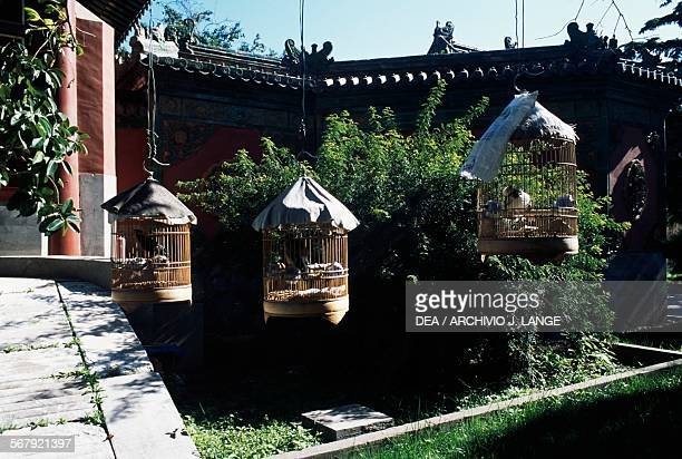 Cages with birds, courtyard of Guanyue temple, Beijing, China.