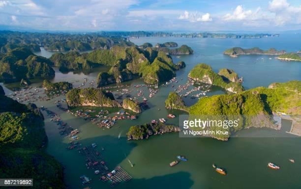 cai beo floating village, cat ba island from above - halong bay imagens e fotografias de stock