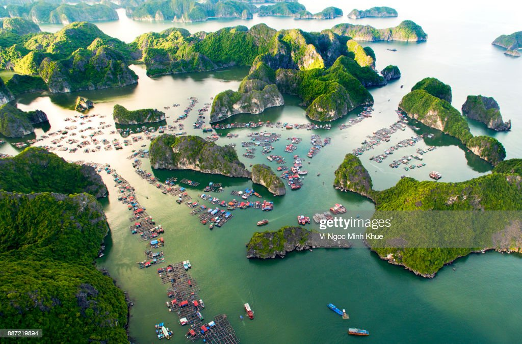 Cai Beo floating village, Cat Ba Island from above : Stock Photo
