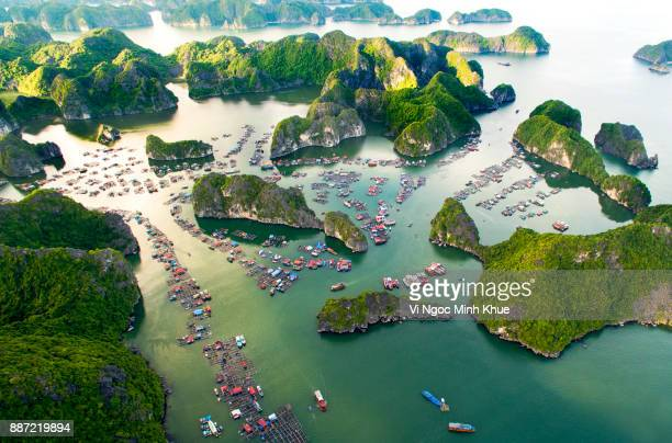cai beo floating village, cat ba island from above - vietnam stock pictures, royalty-free photos & images