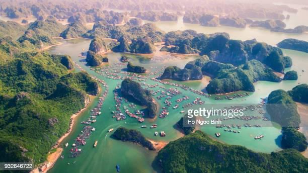 cai beo floating village, cat ba island from above - unesco welterbestätte stock-fotos und bilder