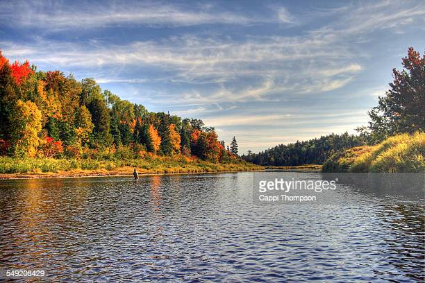 cains river in new brunswick, canada - new brunswick canada stock pictures, royalty-free photos & images