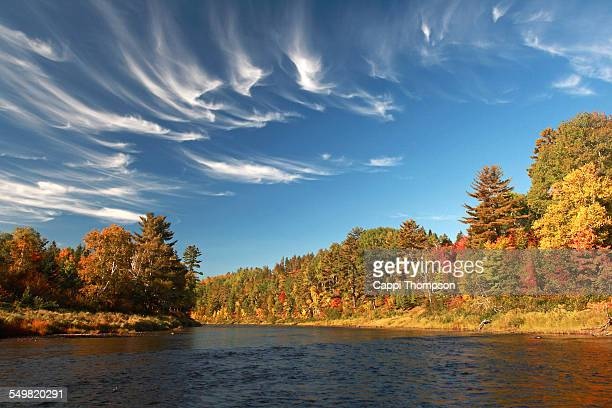 cains river in new brunswick, canada - cappi thompson stock pictures, royalty-free photos & images