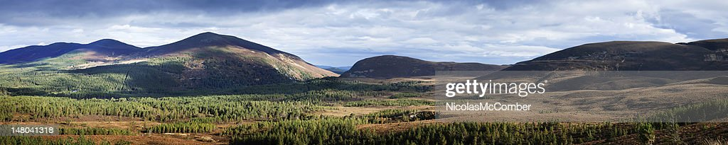 Cairngorms National Park Panorama : Stock Photo