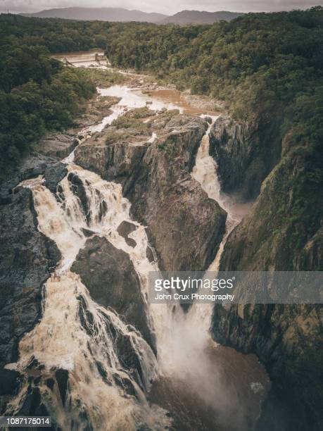 cairns rainforrest waterfall - クランダ ストックフォトと画像