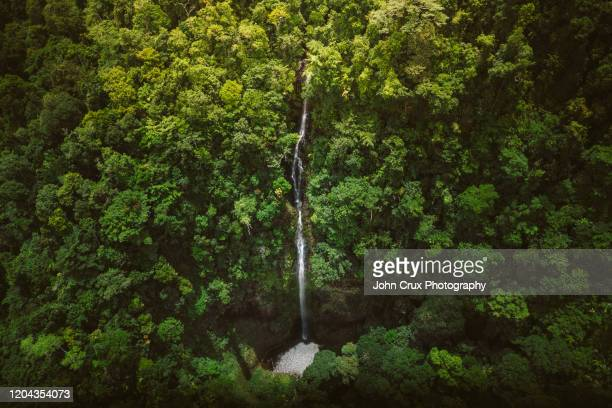 cairns rainforrest waterfalls - land feature stock pictures, royalty-free photos & images