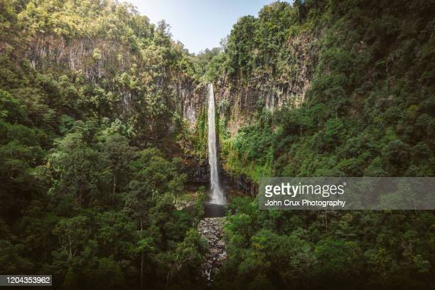 cairns waterfall - atherton tableland stock pictures, royalty-free photos & images