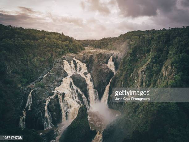 cairns wet season - atherton tableland stock pictures, royalty-free photos & images