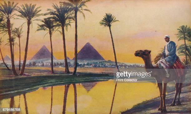 Cairo. Deeply impressive in their grim antiquity the pyramid tombs of Chephren and Cheops are here seen through the palm-trees on the other side of...