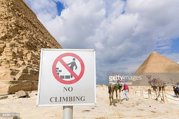 Cairo Egypt November 27 2014 The Giza Necropolis