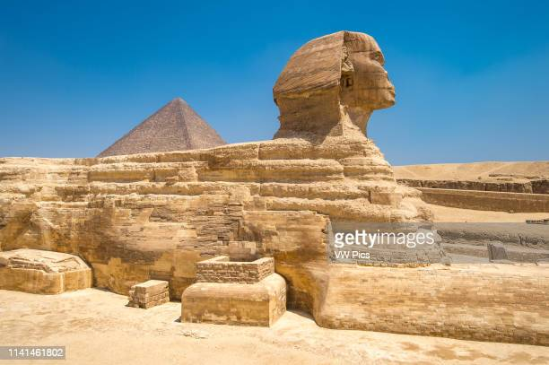 Cairo Egypt the Great Sphinx of Giza standing tall with the Great Pyramids of Giza in the background This particular one is The Pyramid of Khufu the...