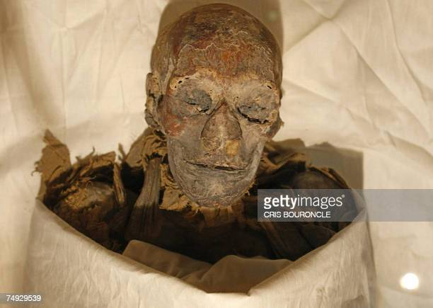 The mummified remains of Queen Hatshepsut ancient Egypt's most famous female pharaoh lie in a glass case after being unveiled at the Cairo Museum 27...