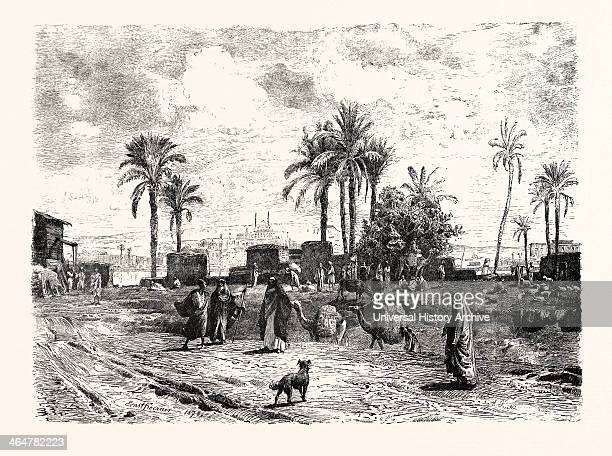 Cairo; From The Left Bank Of The Nile. Egypt, Engraving 1879.