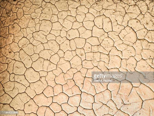 caked and cracked dry mud - dry stock pictures, royalty-free photos & images