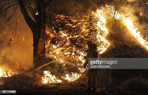 Cal Fire firefighters douses flames from a back burn while fighting the Rocky fire off highway 20 near Clear Lake California on August 2 2015 The...