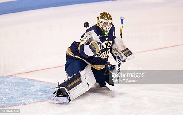 Cal Petersen of the Notre Dame Fighting Irish makes a save against the Northeastern Huskies during NCAA hockey at Matthews Arena on November 13 2016...