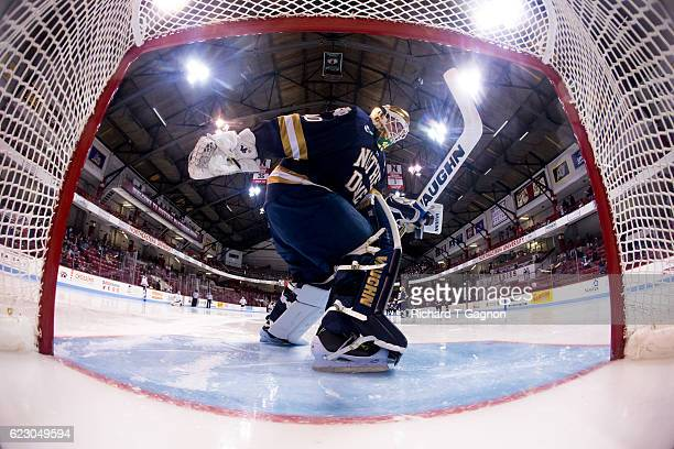 Cal Petersen of the Notre Dame Fighting Irish tends goal against the Northeastern Huskies during NCAA hockey at Matthews Arena on November 13 2016 in...