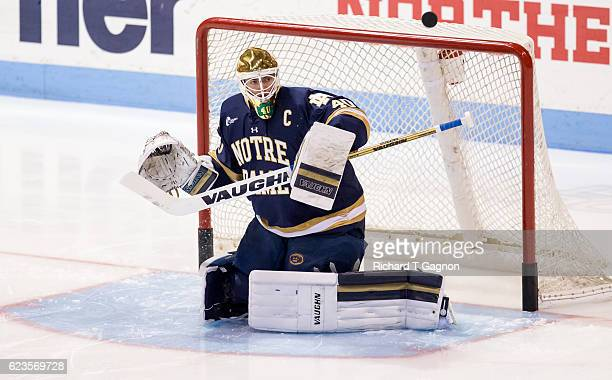 Cal Petersen of the Notre Dame Fighting Irish warms up prior to a game against the Northeastern Huskies during NCAA hockey at Matthews Arena on...