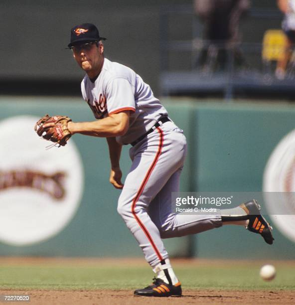Cal Ripken Jr #8 of the Baltimore Orioles fielding against the California Angels at Anaheim Stadium on May 5 1991 in Anaheim California