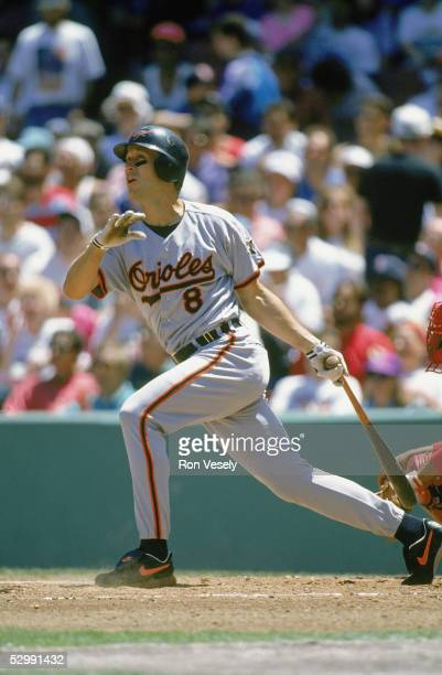 Cal Ripken Jr of the Baltimore Orioles bats during an MLB game at Fenway Park in Boston Massachusetts Ripken played for the Baltimore Orioles from...