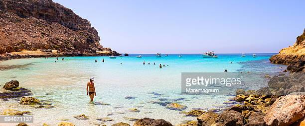 cala pulcino beach, marine natural reserve - lampedusa stock pictures, royalty-free photos & images
