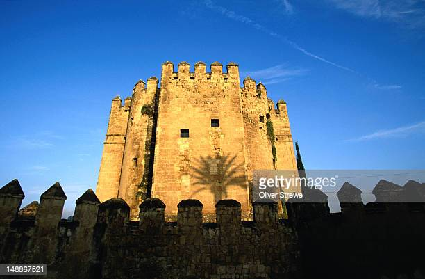 calahorra tower, jewish and muslim museum. - jewish museum stock pictures, royalty-free photos & images