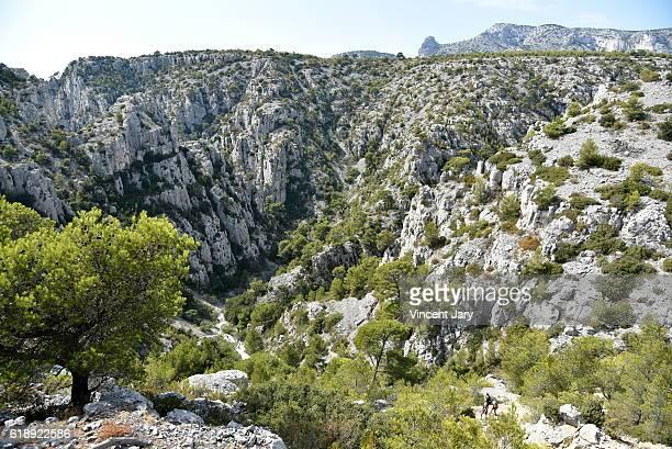 Calanques landscape at Alpes Massif Bouches du Rhone France Europe