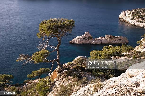 Calanques near Marseille Torpilleur
