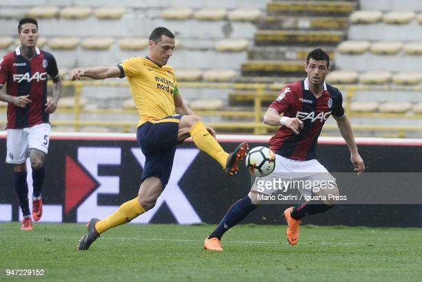 Caldeira Romulo of Hellas Verona FC in action during the serie A match between Bologna FC and Hellas Verona FC at Stadio Renato Dall'Ara on April 15...