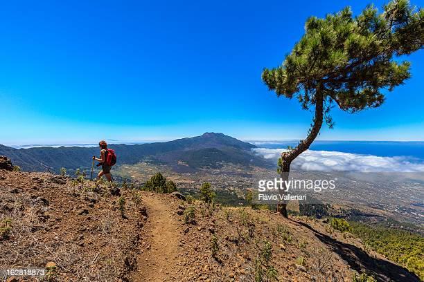 caldera de taburiente national park, la palma - caldera stock pictures, royalty-free photos & images