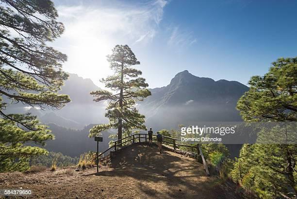 """""""caldera de taburiente"""" national park (la palma island. canaries. spain) - dähncke fotografías e imágenes de stock"""