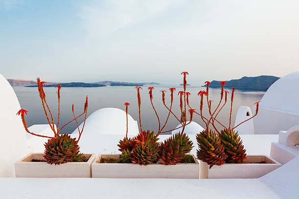 Caldera View of Santorini, Oia, Greece