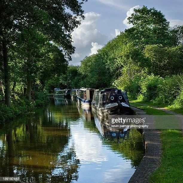 caldon canal - stoke on trent stock pictures, royalty-free photos & images