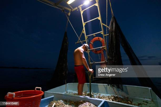 Caleb Hanson grandson of longtime shrimper Acy Cooper looks at the haul after emptying a net of shrimp and bycatch during a 12 hour plus overnight...